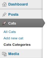Добавляем категории для пользовательского типа постов